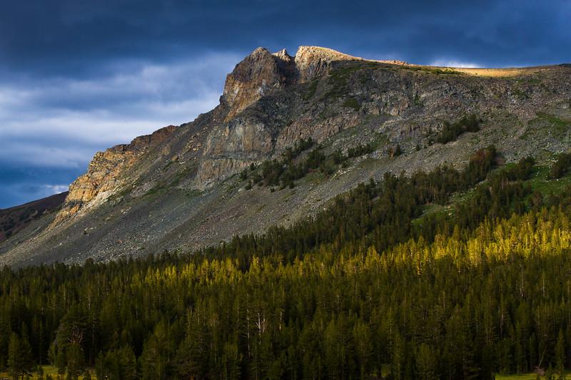 The Edge of Tuolumne Meadows - Yosemite NPS