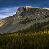 The Edge of Tuolumne Meadows - Yosemite NPS