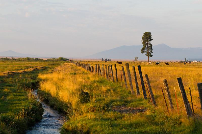 Oregon's Countryside