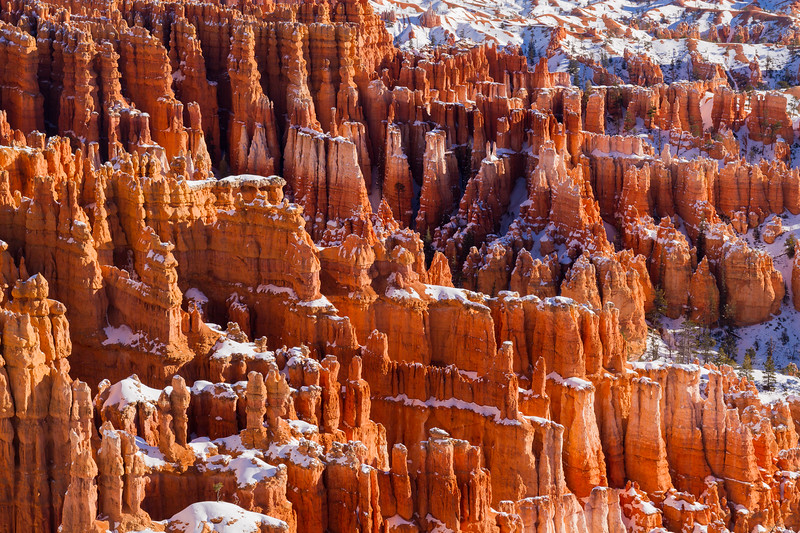 Hoodoo Details - Bryce Canyon National Park