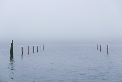 a foggy day at Bar Harbor