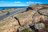 Maine - Acadia - 2014 - D6-C4 - 2 riders descending Cadillac - horizontal - 72 ppi