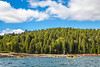 Maine - Acadia - Sojourn - D5-C2-0164 - 72 ppi