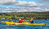 Maine - Acadia - Sojourn - D5-C2-0159 - 72 ppi-2