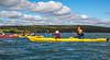 Maine - Acadia - Sojourn - D5-C2-0158 - 72 ppi-2