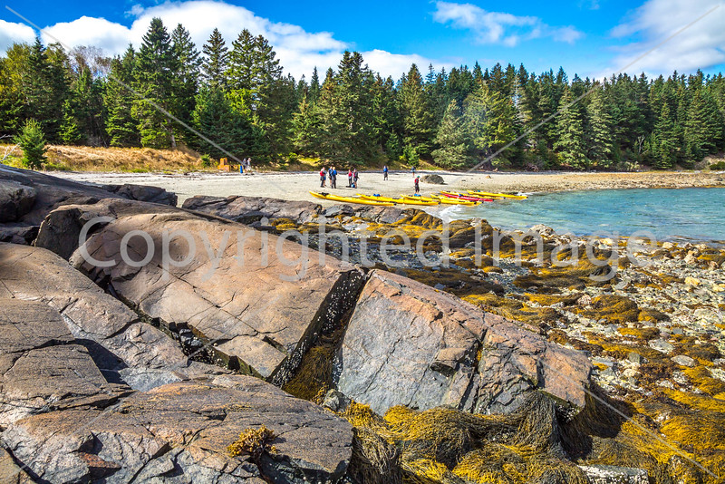 Maine - Acadia - Sojourn - D5-C2-0285 - 72 ppi