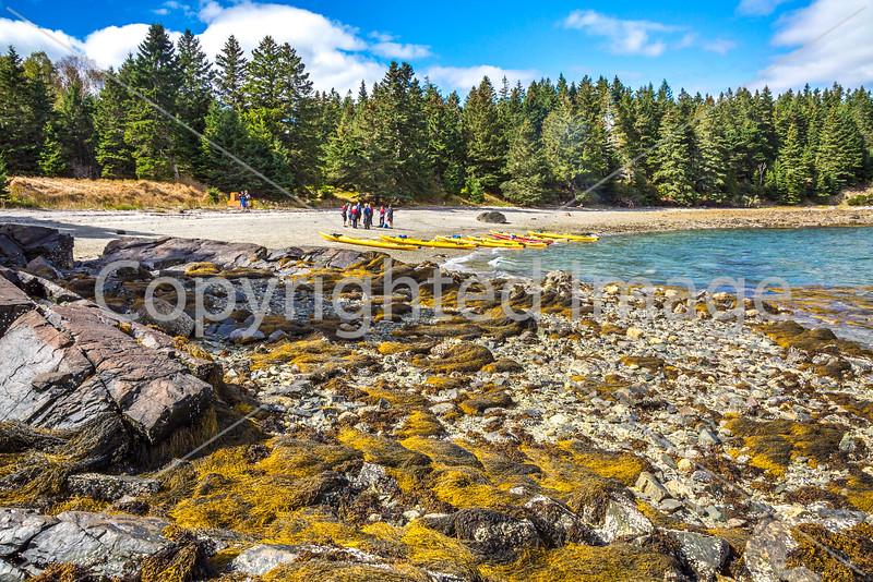 Maine - Acadia - Sojourn - D5-C2-0282 - 72 ppi