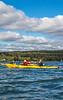 Maine - Acadia - Sojourn - D5-C2-0159 - 72 ppi