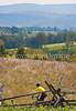Cyclist at Antietam National Battlefield, Maryland-M1--1396 - 72 ppi