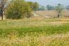 Cyclist at Antietam National Battlefield, Maryland-M1--1353 - 72 ppi