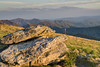 The view near the summit of Round Bald on the Appalachian Trail in TN on Wednesday, May 15, 2013. Copyright 2013 Jason Barnette