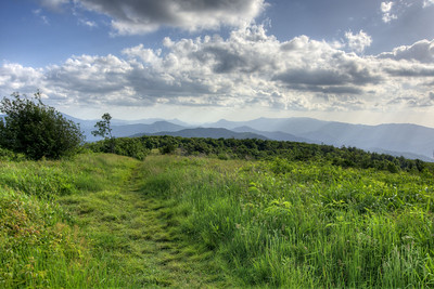 The view along the Appalachian Trail at the Beauty Spot on Unaka Mountain in Erwin, TN on Saturday, June 13, 2015. Copyright 2015 Jason Barnette  The Beauty Spot is located at Mile 350.5 on the Appalachian Trail in Tennessee.