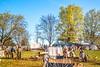 Appomattox Court House Nat'l Historic Park, VA, on 150th Anniversary of surrender - C1--0105 - 72 ppi