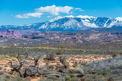 La Sal Mountains_Arches-4207