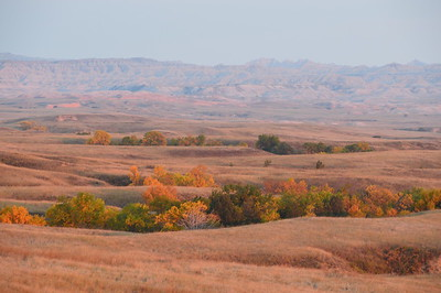 Colors of Sage Creek