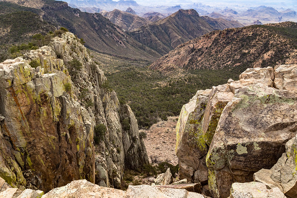 View from Emory Peak