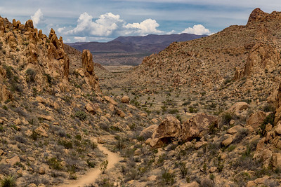 Grapevine Hills Trail