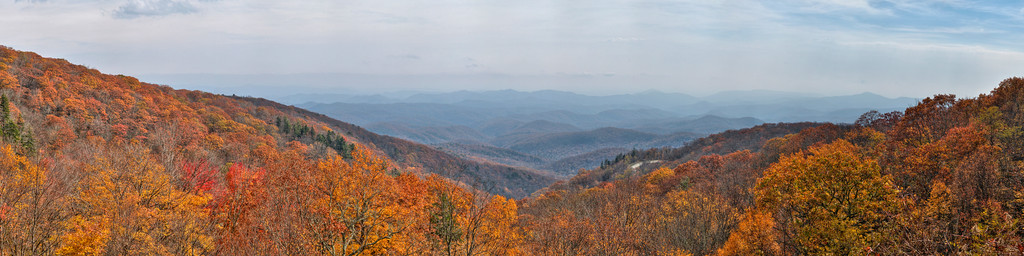 on the Blue Ridge Parkway in NC