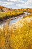 Bosque del Apache Nat'l Wildlife Refuge, New Mexico -0090 - 72 ppi