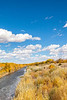 Bosque del Apache Nat'l Wildlife Refuge, New Mexico -0117 - 72 ppi