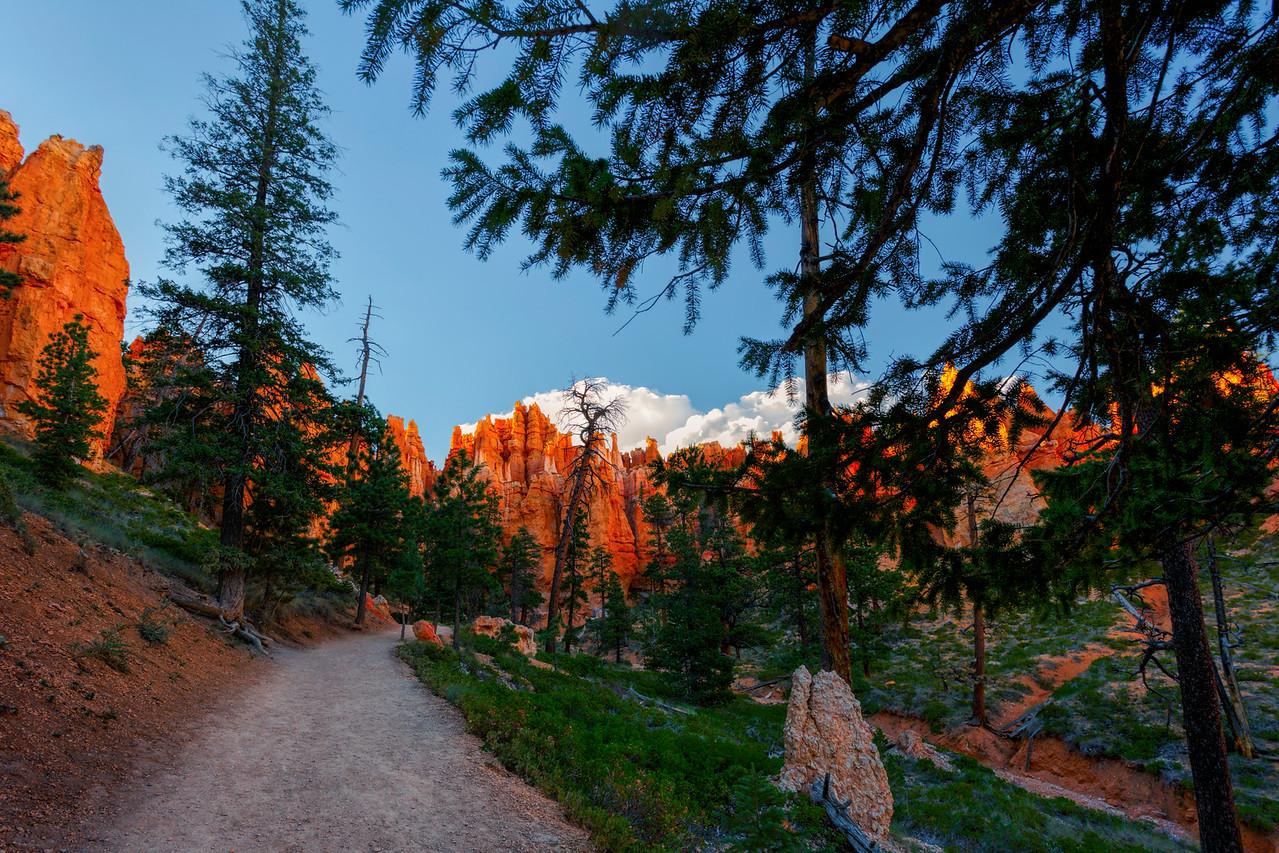 Bryce Canyon Navajo trail