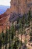 Day hikers in Utah's Bryce Canyon National Park - 22 - 72 ppi