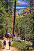 Day hikers in Utah's Bryce Canyon National Park - 14 - 72 ppi