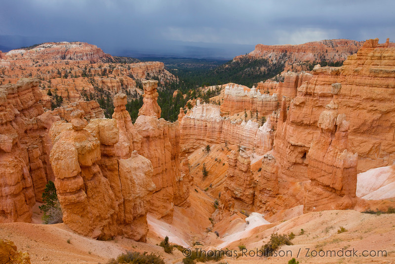 Thor's Hammer and Anvil glow in the stormy lighting along the Navajo Loop in Bryce Canyon National Park.