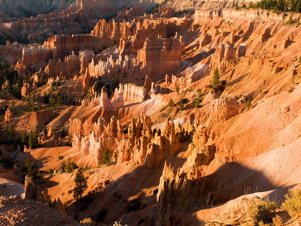 Bryce Canyon Amphitheatre At Sunset Point