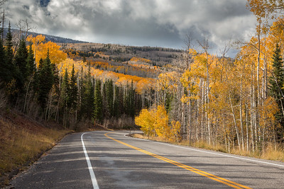 Highway 12 Fall Color