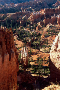 Bryce Canyon At Sunrise Point