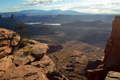 Canyon view of Dead Horse Point Overlook
