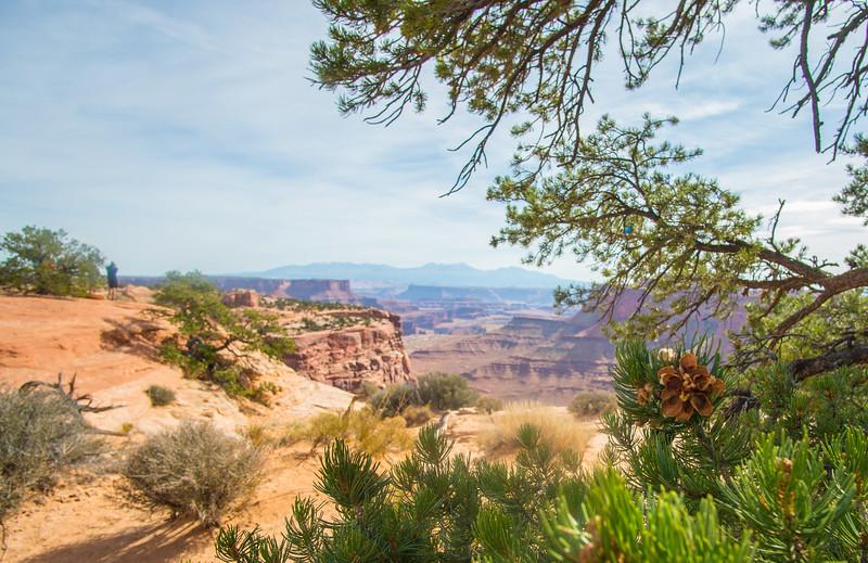 Canyonlands050