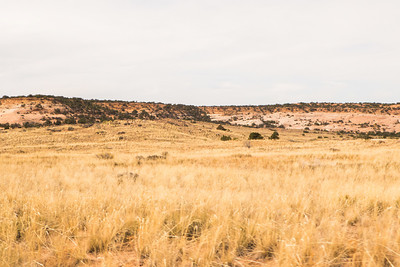 Canyonlands077