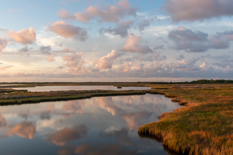 Morning on Bodie Island