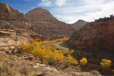 CR-NP-171018-0009 Fall Colors Along the River #1