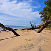 James River coastline - Along the Colonial Parkway