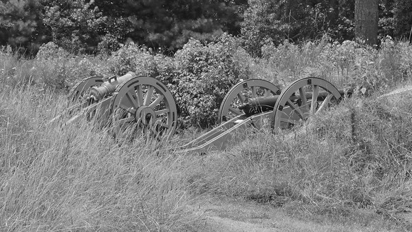 Cannon of the LIne