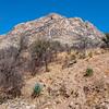 Eyeing Montezuma Peak