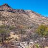 Overlooking Montezuma Canyon