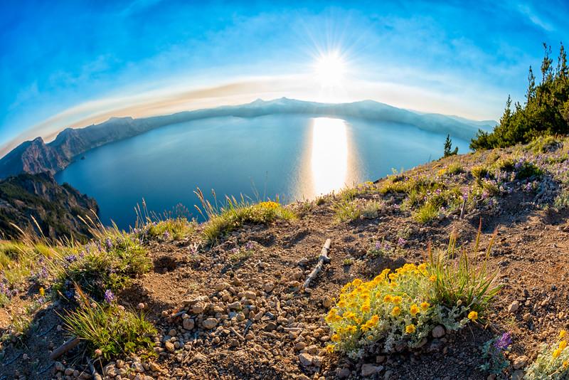 Crater Lake Wildflowers Sunset Fish Eye - Crater Lake-4