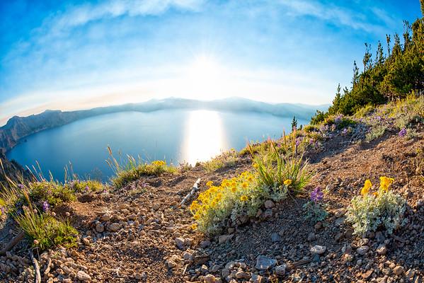 Crater Lake Wildflowers Sunset Fish Eye - Crater Lake-2