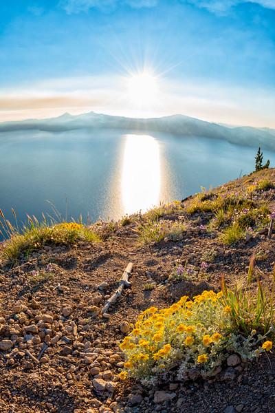 Crater Lake Wildflowers Sunset Fish Eye - Crater Lake-5