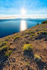 Crater Lake Wildflowers Sunset Fish Eye - Crater Lake