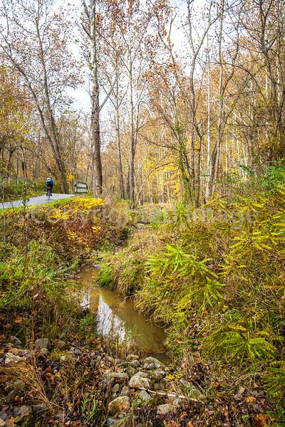 Biker in Cuyahoga Valley Nat'l Park, Ohio - -0018 - 72 ppi