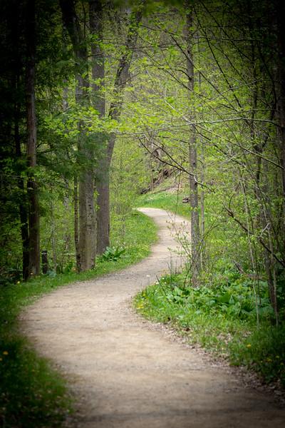 Haskell Run Trail