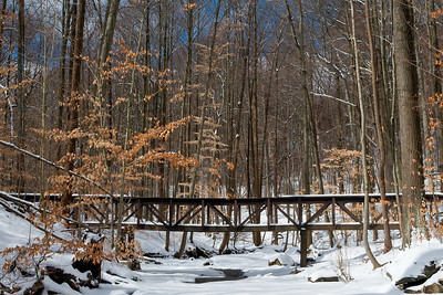 Bridge to Blue Hen Falls