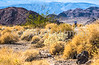 Death Valley National Park - D4-C3-0705 - 72 ppi