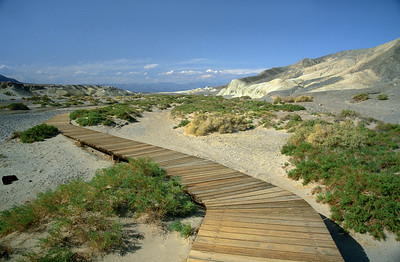 Boardwalk at Salt Creek