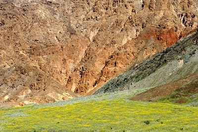 Death Valley 203